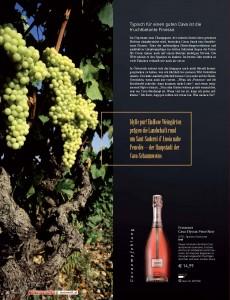 Weinwelt_2011_04_Cava_3